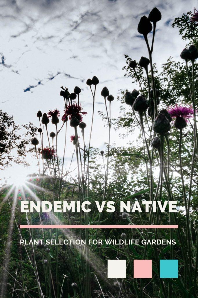 Wildlife Gardening: Endemic vs Native Species