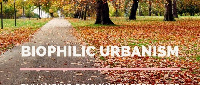 Autumn trees in Hyde Park London